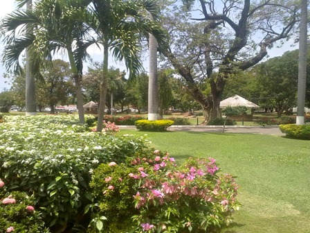 Devon House gardens Kingston Jamaica