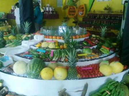 Fruit and Veg Display at Denbigh Agricultural Show Clarendon Jamaica