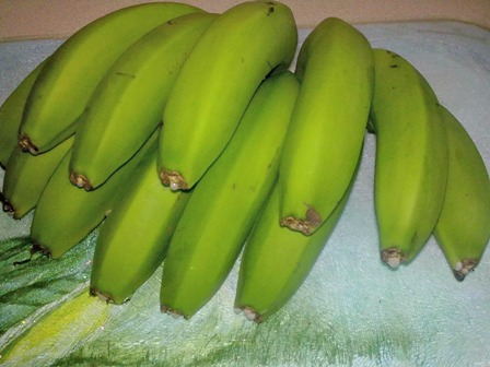 Jamaica green bananas