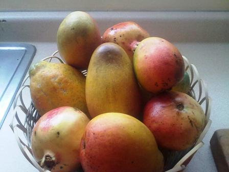 Jamaican Fruit Basket