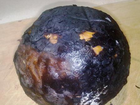 Jamaican Breadfruit roasted on open coals