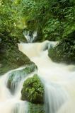 Cranbrook Falls Portland - courtesy of JTB