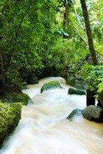 Somerset Falls Portland Jamaica